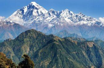 Коронавирус в Непале